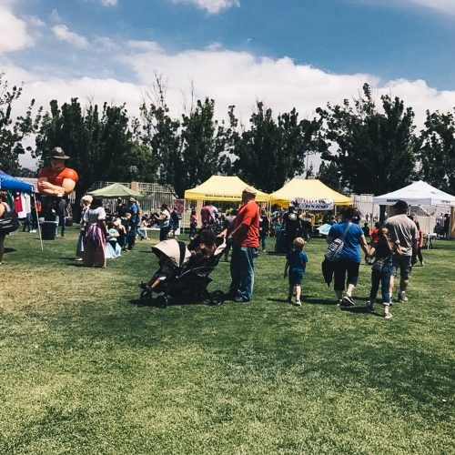Touch-A-Truck-2017-Event-127